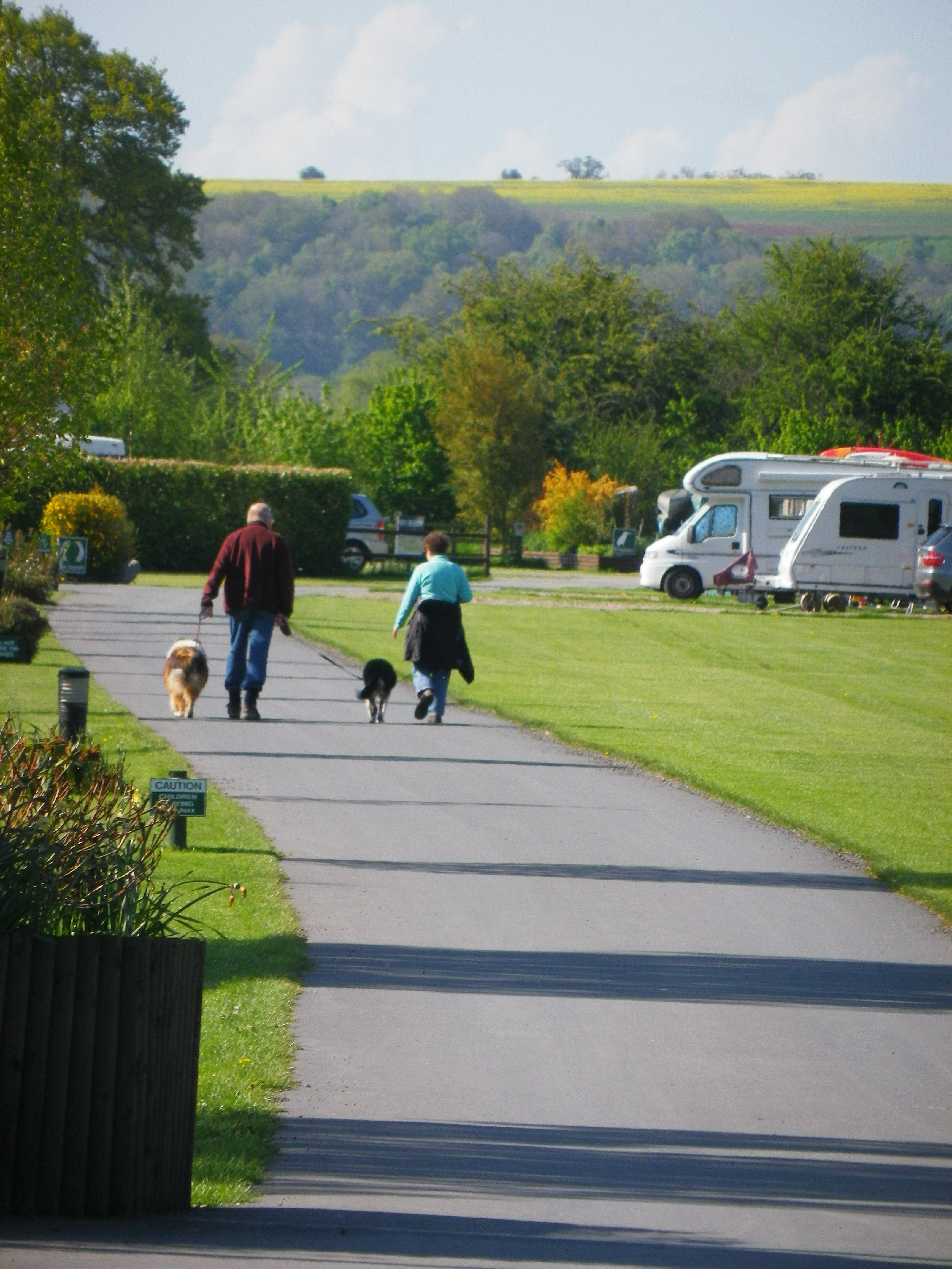 Riverside Customer walking their dogs through the caravan and camping park.